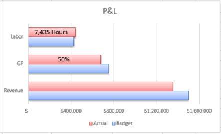Profit & Loss KPI