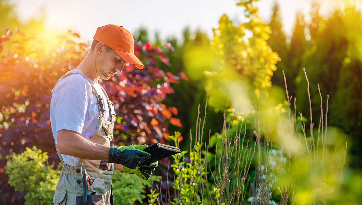 5 Reasons Why Software Matters to Your Landscaping Business