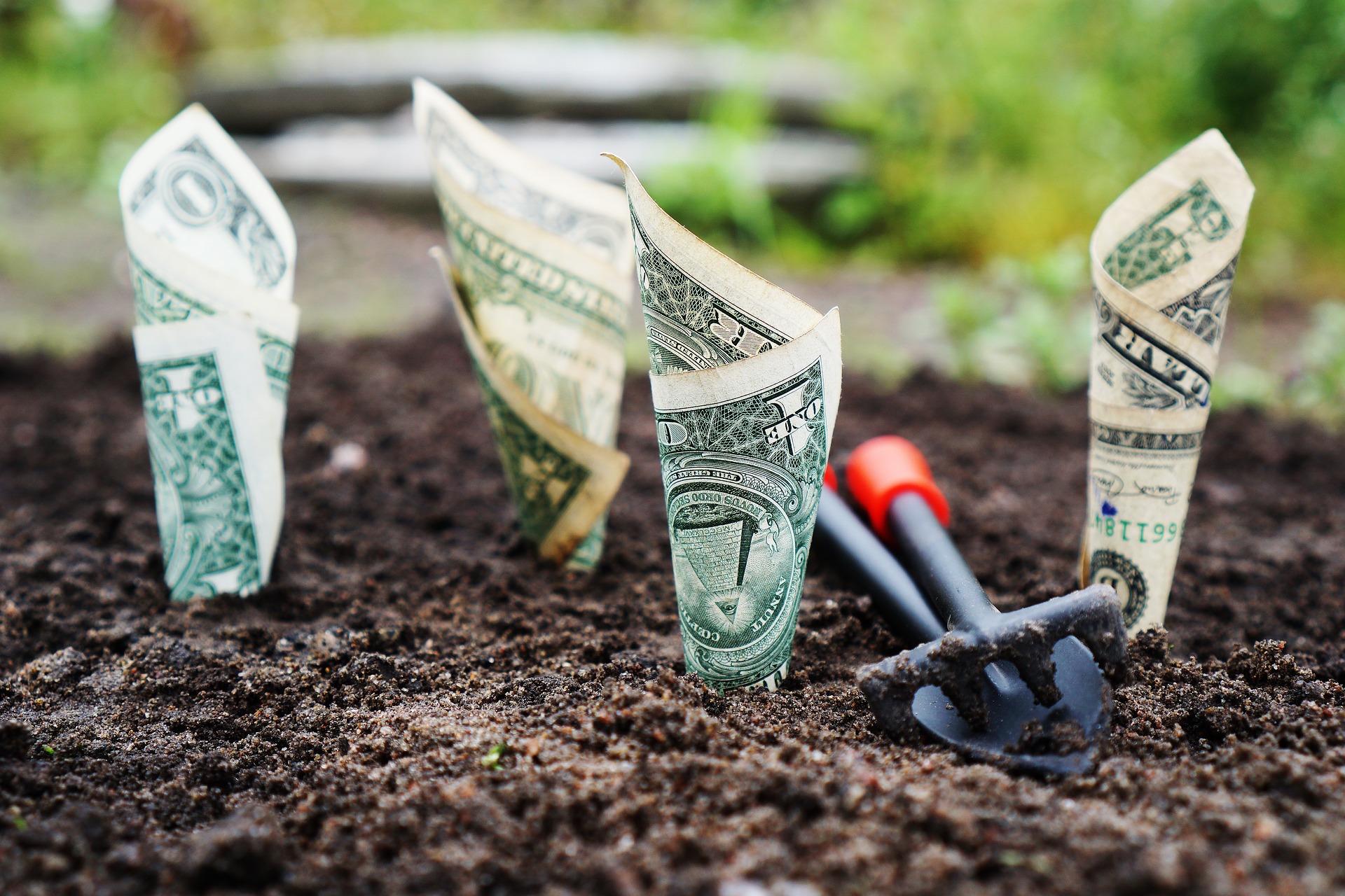 Should I Make A Landscape Business Software Investment?